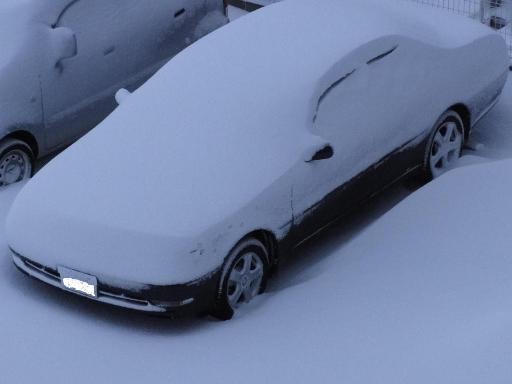 2011-01-16大雪
