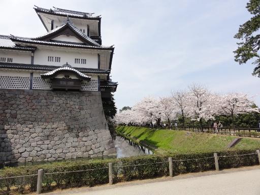 20120415金沢城の桜-1