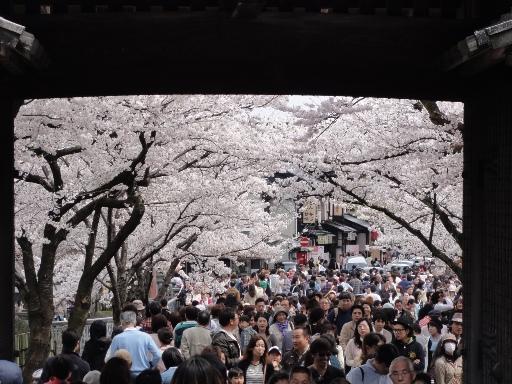 20120415金沢城石川門
