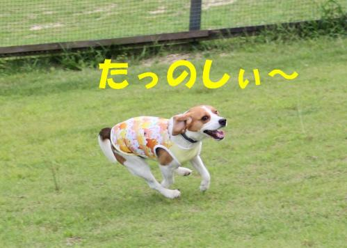 IMG_6709-1.jpg