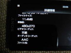 10061503.jpg