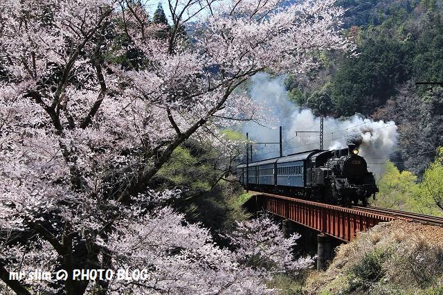 笹間川_05