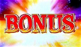 bonus_20100721032539.jpg