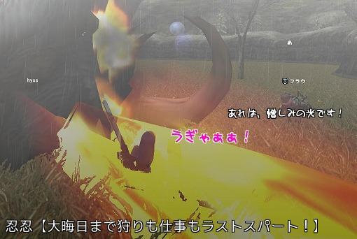 変ファンゴ1