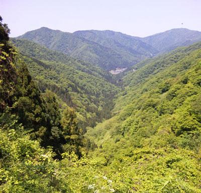 横山岳08