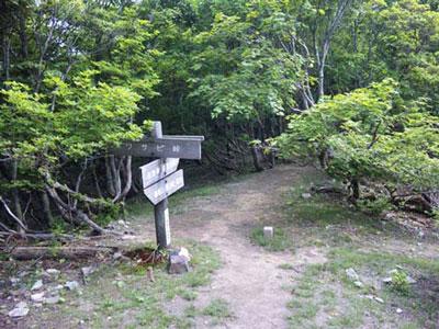 武奈ヶ岳(標高1214.4m)|滋賀県|2012/06/02|山ガール|登山|日帰り
