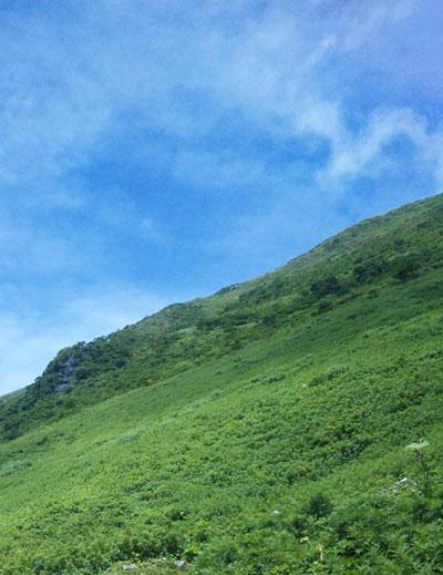 伊吹山(標高1377m)|滋賀県|2012/07/16|山ガール|登山|日帰り