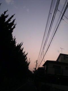 Image10691[1]