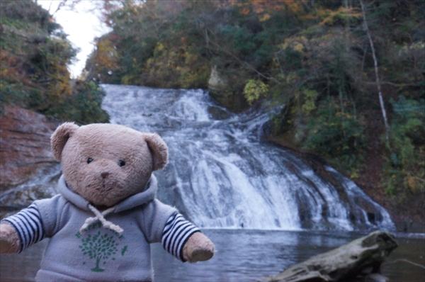 養老の滝とくま