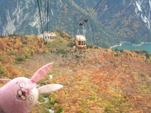 大観峰駅から見たタンボ平
