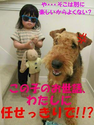 IMG_0870_sh01.jpg