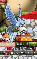 幸せの青い鳥(ワラ
