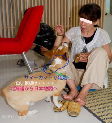 目線20110814-IMG_6379
