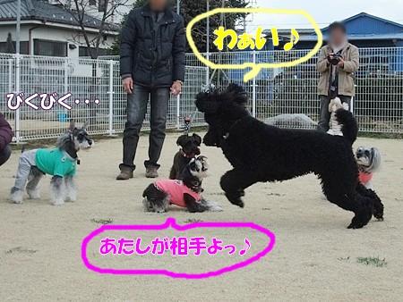 2012_0311_11.jpg