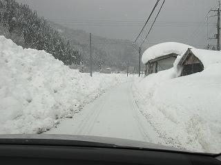 20110122生杉 003