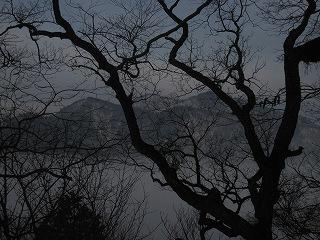 20110205-6生杉 050