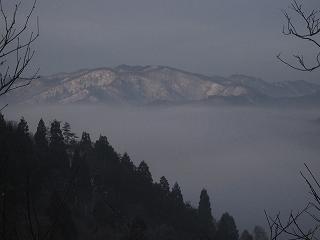 20110205-6生杉 052