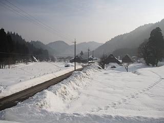 20110205-6生杉 063