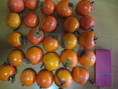25個の柿