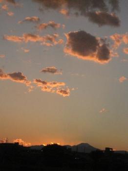 IMG_5371-201011.jpg