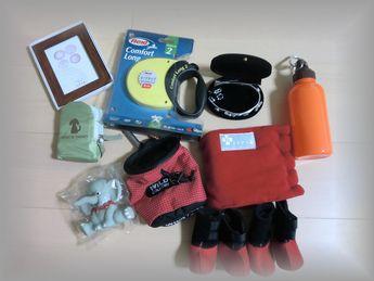 2011春提供品 (4)