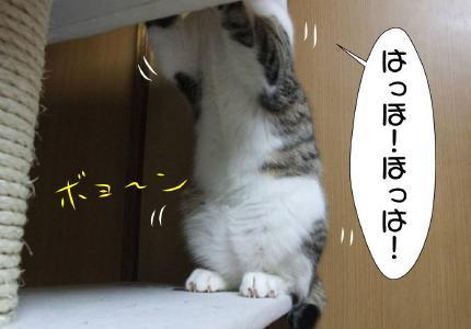 04_20101028020355.jpg