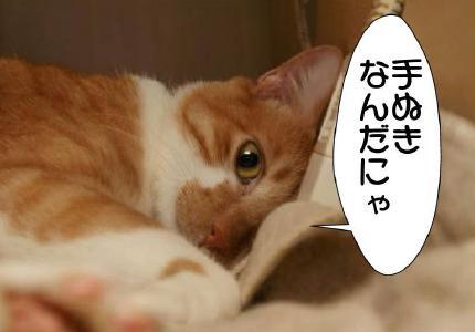 5_20101026233421.jpg