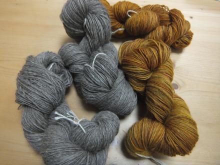 多色染めコリデールと金の羊スコティッシュ