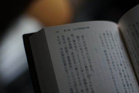 DSC02900.jpg