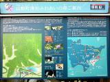 清和文楽邑(3)
