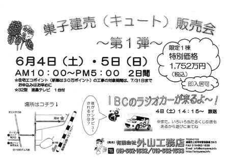 scan-26.jpg
