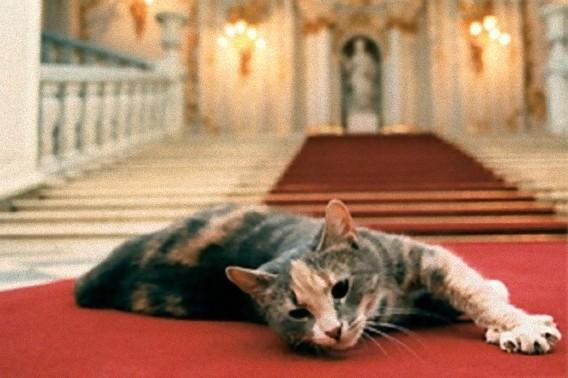 エルミタージュ美術館の猫-その1