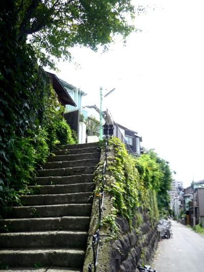 猫町ギャラリー階段