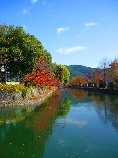 京都-仁王門通り疎水