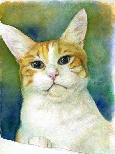 透明水彩画「マルオ君」