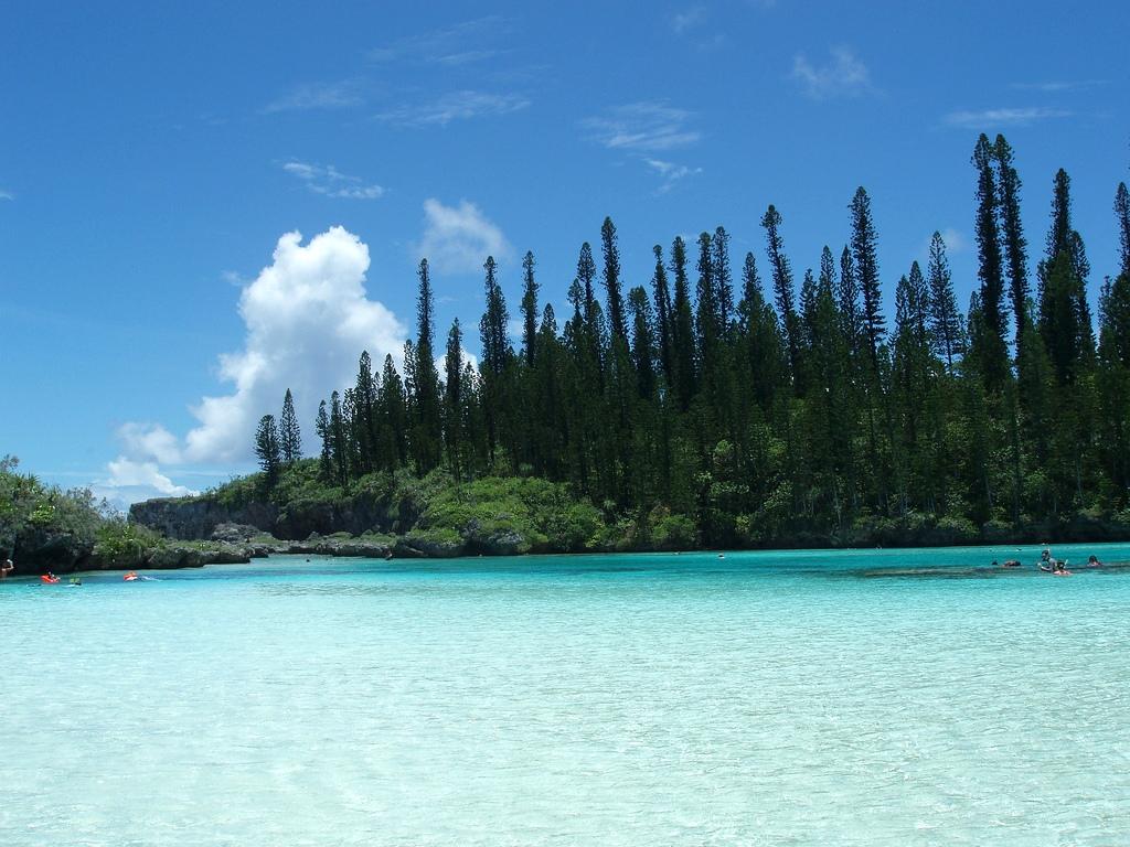 南の島Navi 『ニューカレドニア/イル・デ・パン島』