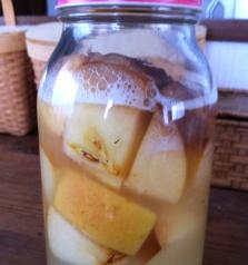 りんご酵母2