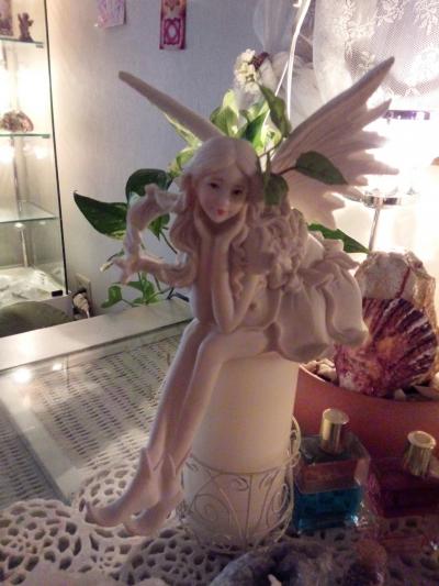 2014 fairy fairy