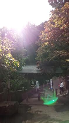 2014 iooyama mon