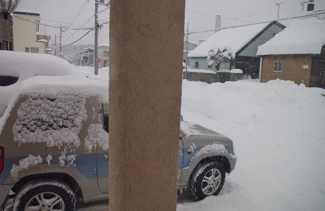 雪IMGP4391
