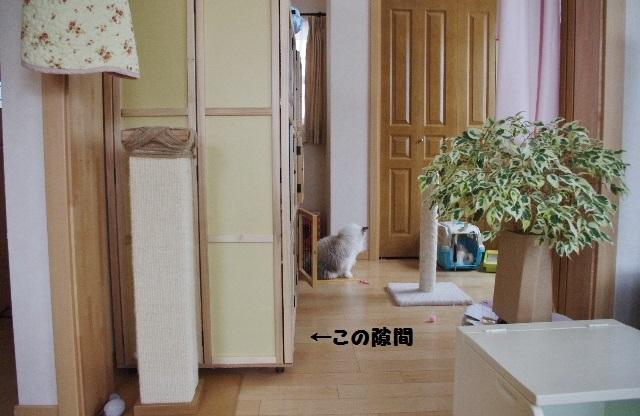 NNIMGP0905.jpg