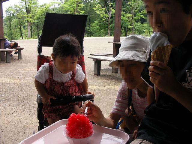 20100627昭和村3