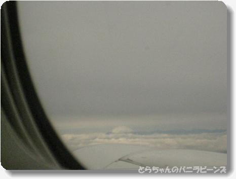 高知 上空から富士山