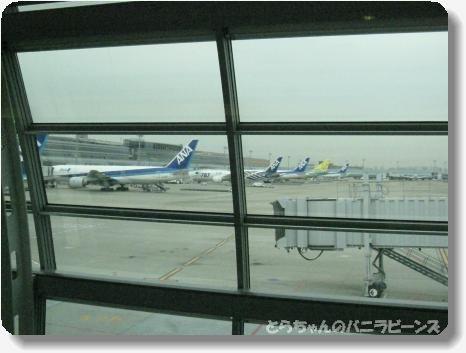 高知 空港2