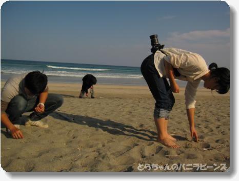 高知2大岐浜4