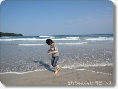 高知2大岐浜2