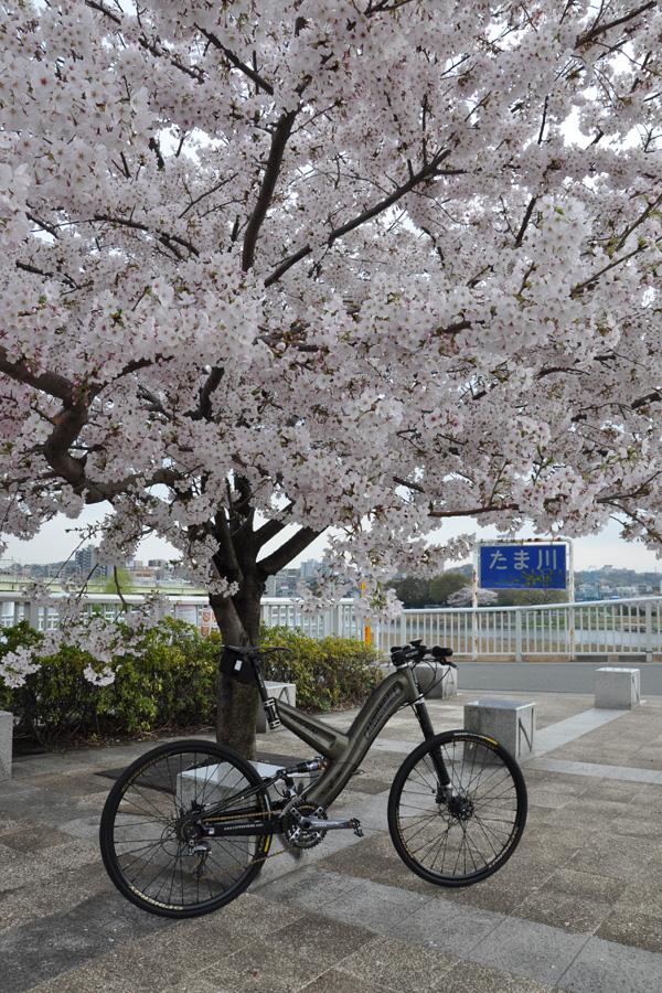 110410-tokyo-03.jpg