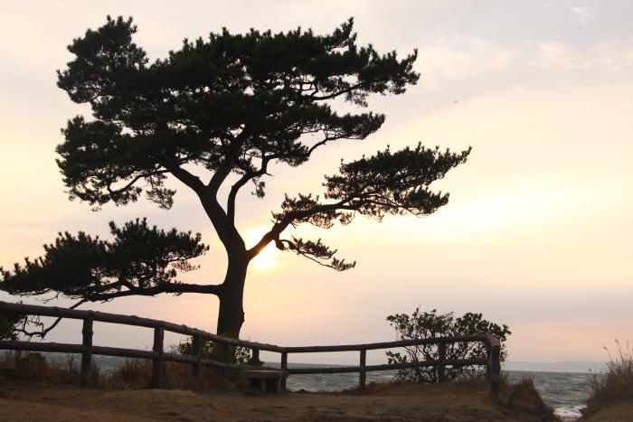 20101226立石公園3