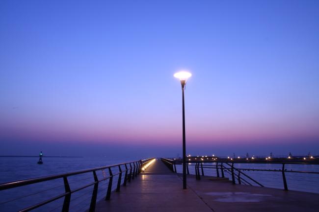 20110205東扇島東公園1