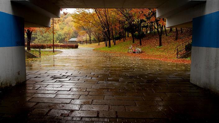 20111203徳生公園6a